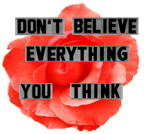 dont believe everything u think