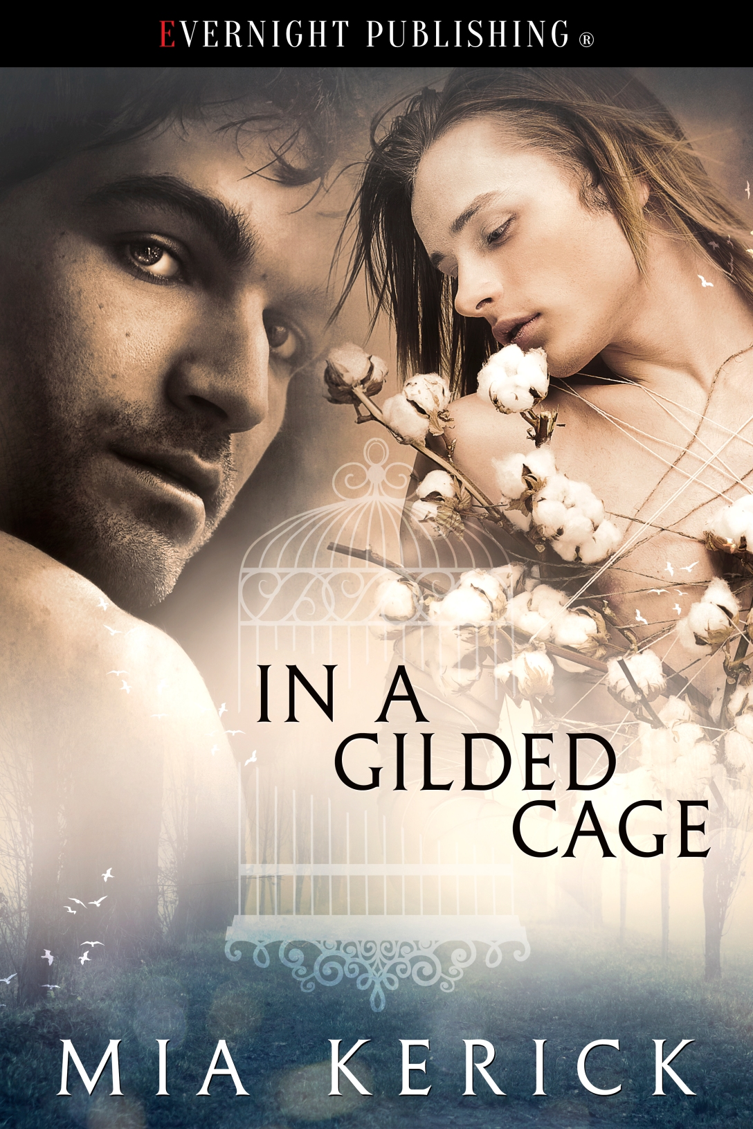cover-in-a-guilded-cage-evernightpublishing-2016-ver2