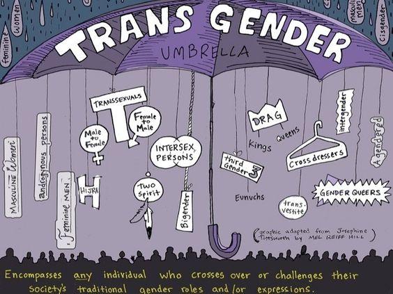 trans-umbrella